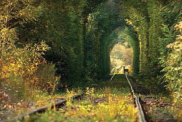 ask-tuneli1